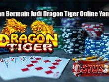Panduan Bermain Judi Dragon Tiger Online Yang Tepat
